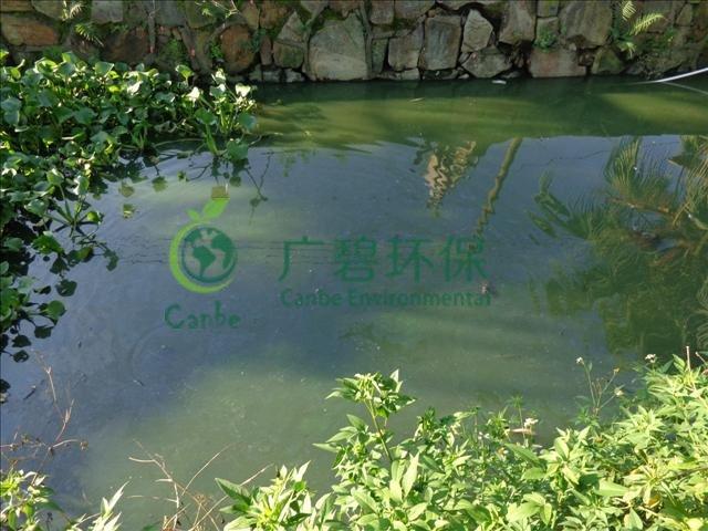 城市河道污染原因及治理措施