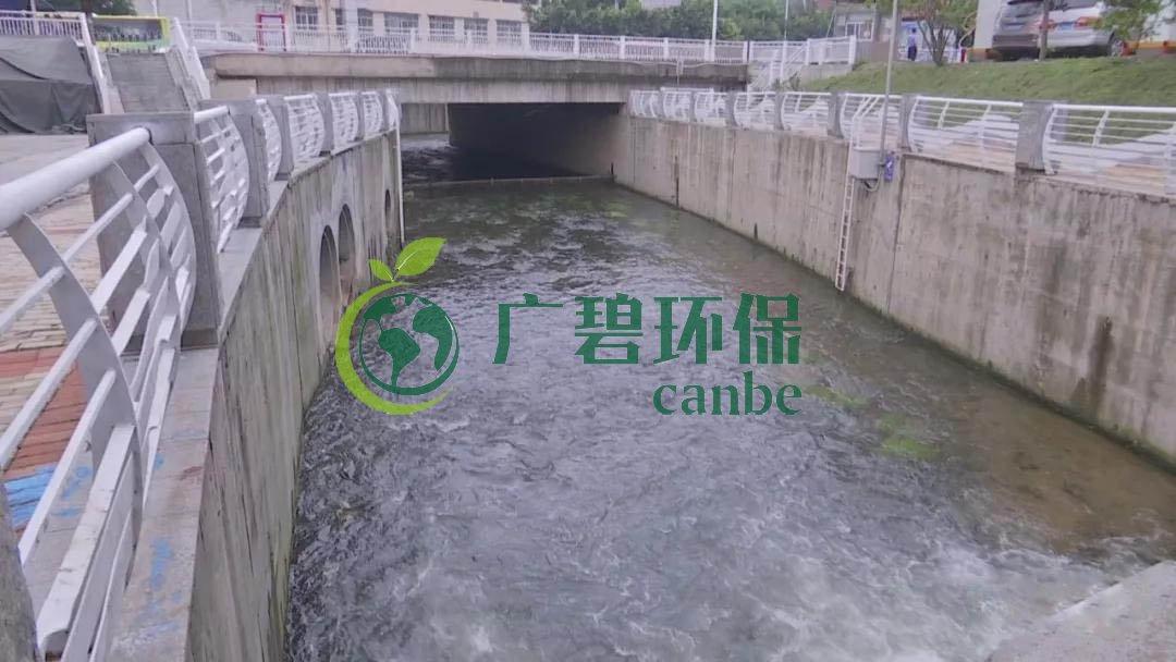 广州市治理河道黑臭水体治理经验分享
