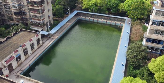 游泳池水变绿是什么原因?游泳池水处理方法