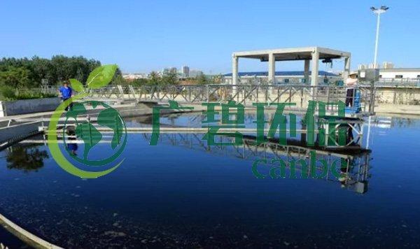 城镇黑臭河涌污染整治方法与国内外对比研究