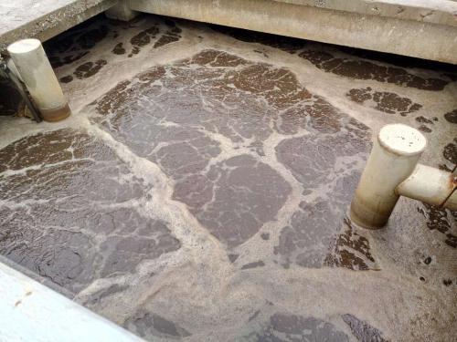 什么是制革废水?制革废水特点与处理工艺