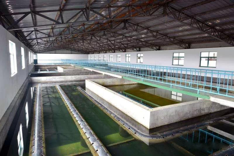 什么是制糖废水?制糖废水处理技术