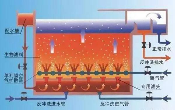 曝气池和曝气生物滤池有什么区别