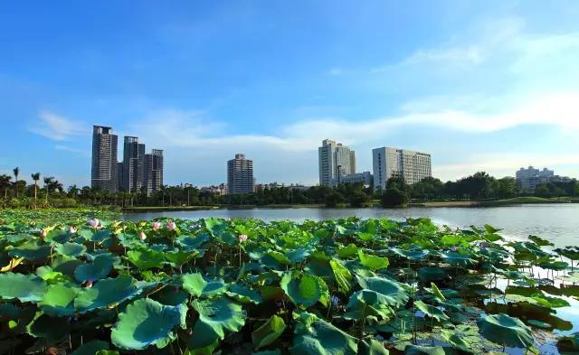陕西省宝鸡等8市(区)因大气环境问题被提醒谈话
