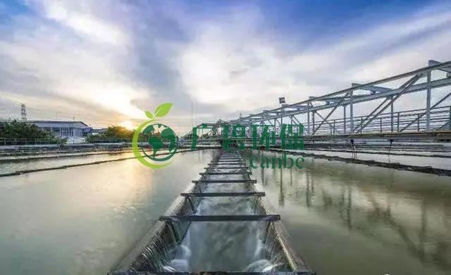 污水处理常见基础知识 污水处理术语解释