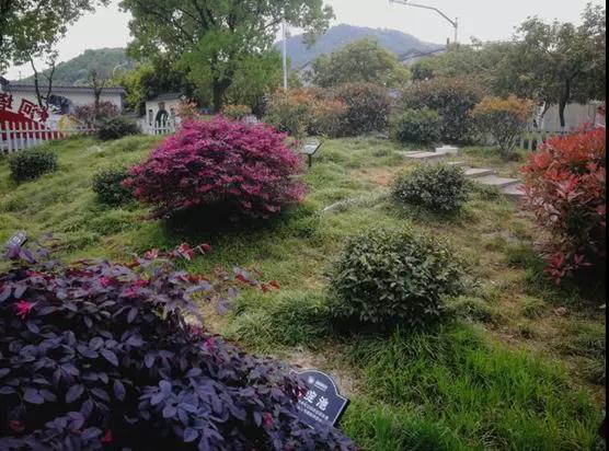 佛山顺德龙江镇某村6t/d生活污水处理设施建设工程