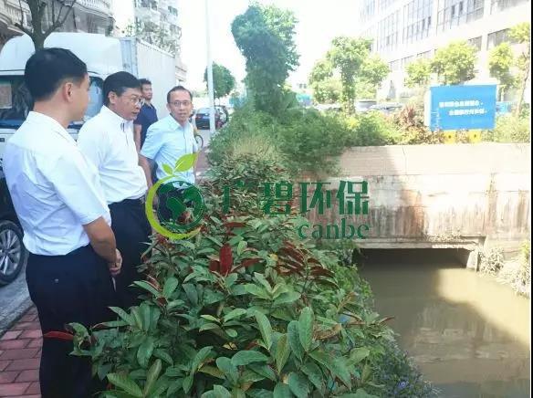 佛山市生态环境局长杨永泰视察高明黑臭水体围拳涌整治工作