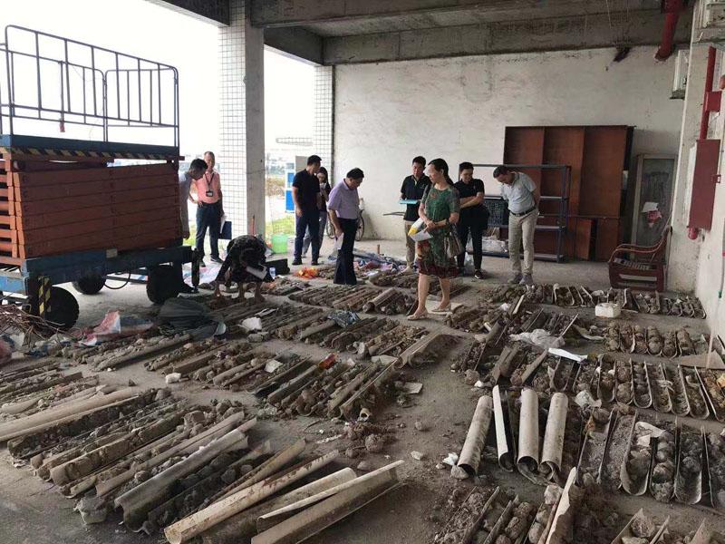广碧环保承接顺德容桂宝供物流城场地调查项目顺利通过专家评审