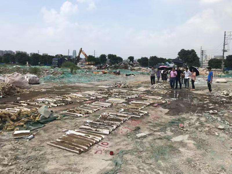 容桂街道办容边居委会桂洲大道东8号地块二地块 场地环境初步调查报告公示