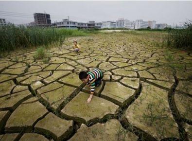 土壤镉污染如何进行修复