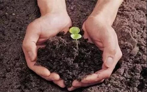 土壤修复开始前要做好这三点