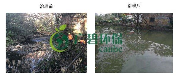 广碧环保金陡涌河涌黑臭水体 治理服务项目顺利通过验收