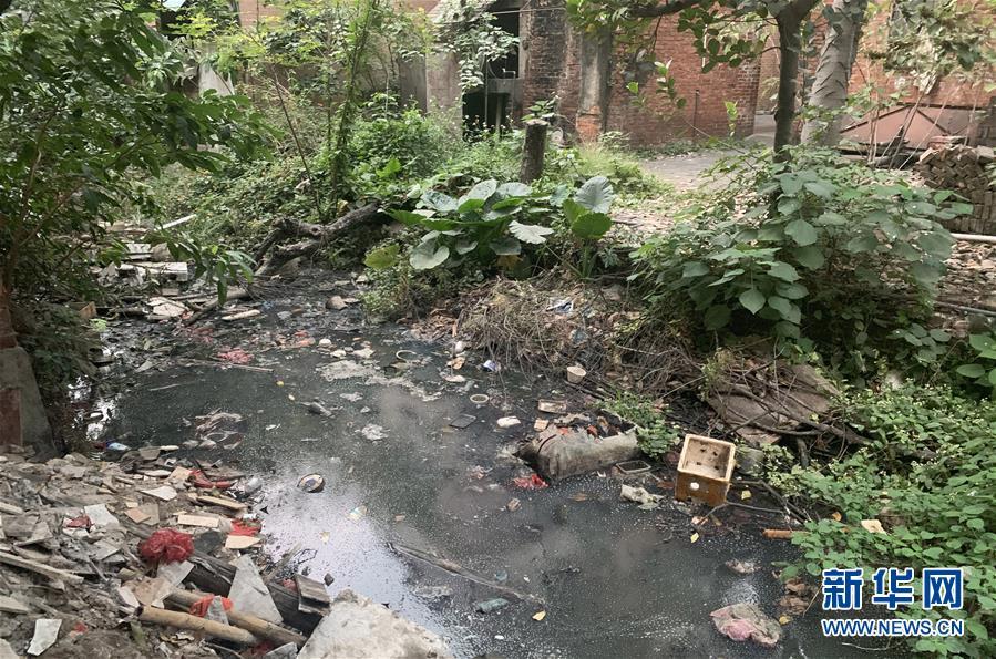 河道治理措施分析