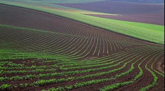 土壤的头号威胁——土壤侵蚀