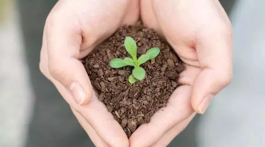 关于土壤污染修复,你了解多少?
