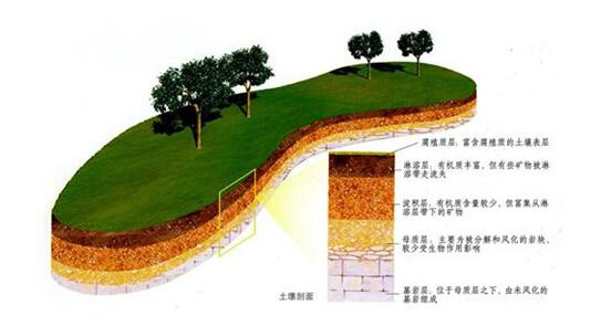 土壤这层地球的皮肤有多厚?