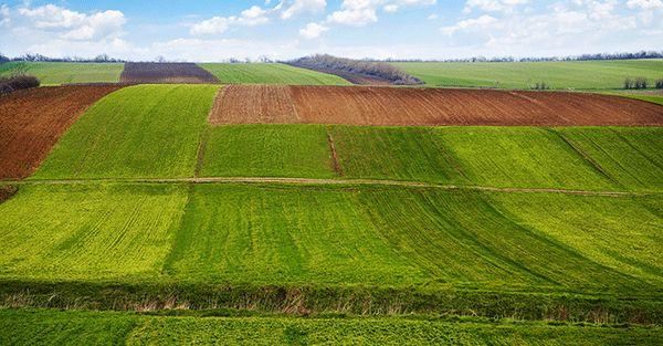 土壤侵蚀是什么?什么导致了土壤侵蚀?
