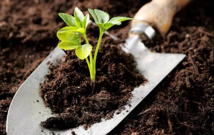 """土壤修复常用各种""""标准值"""""""
