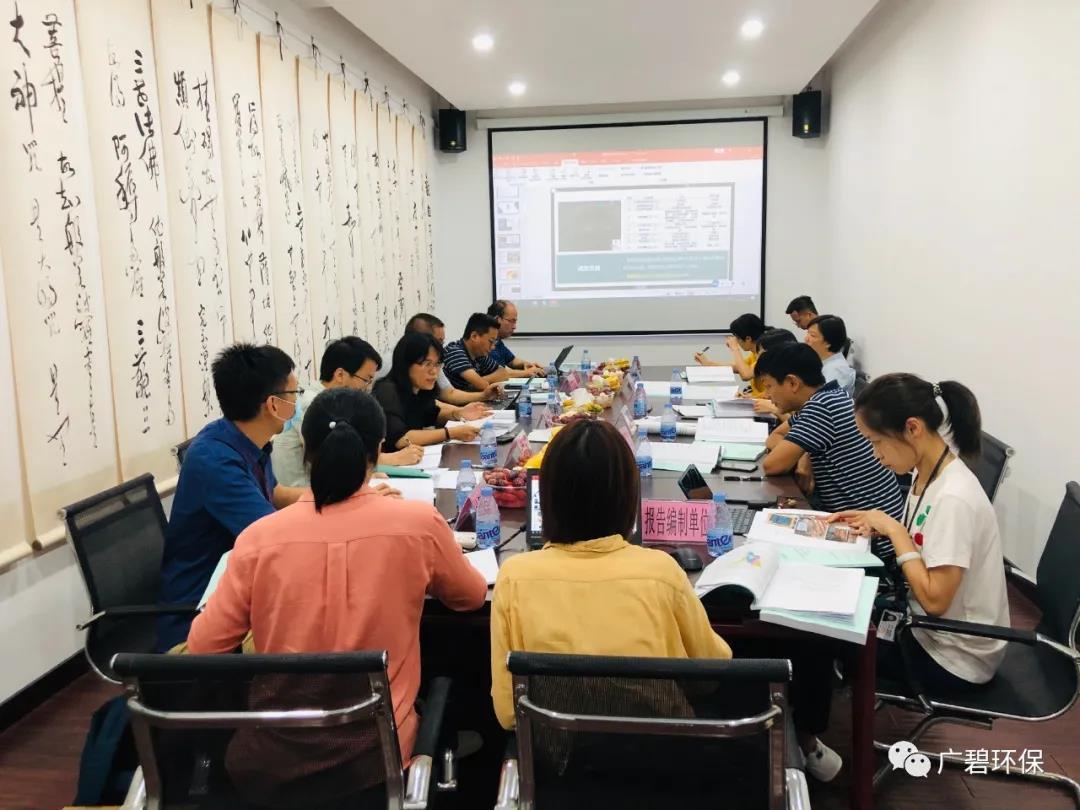 广碧环保《容桂街道容新居委会德胜路40号地块土壤污染状况初步调查报告》通