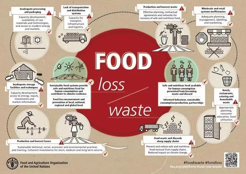 7个习惯,帮你减少食物浪费